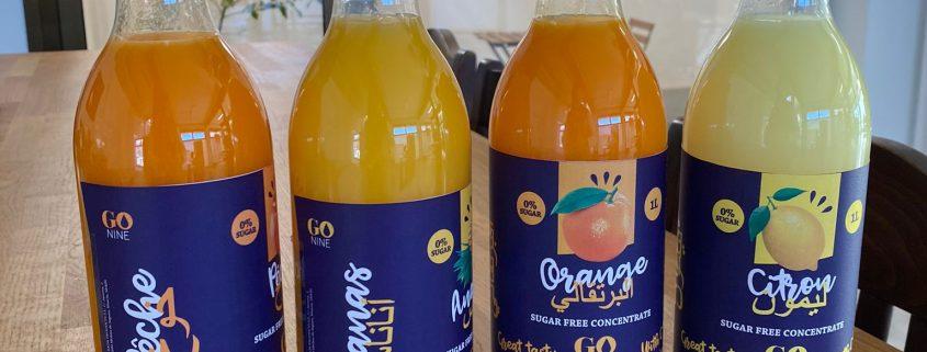 go nine concentrado de naranja