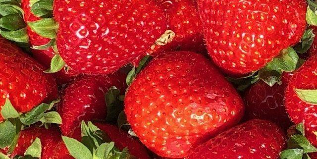 pure de fresa